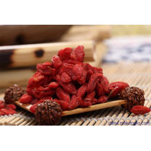 Highberry Chinese Wolfberry Supply