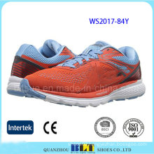 New Style Mesh Upper Wholesale Women Sport Shoes