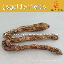 Chinese Raw Cynomorium songaricum on hot sale
