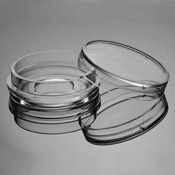 Placa de cultura de células com fundo de vidro de 15 mm