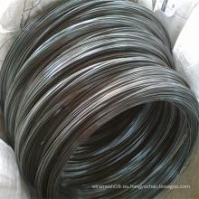 Bwg12 Alambre de hierro recocido negro