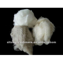 100% dehaired cashmere fibre for yarn spinning