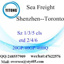 เซินเจิ้นพอร์ตการจัดส่งสินค้าทางเรือทะเลไปโตรอนโต