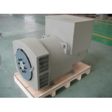 Трехфазный бесщеточный генератор мощностью 450 кВт (JDG354ES)