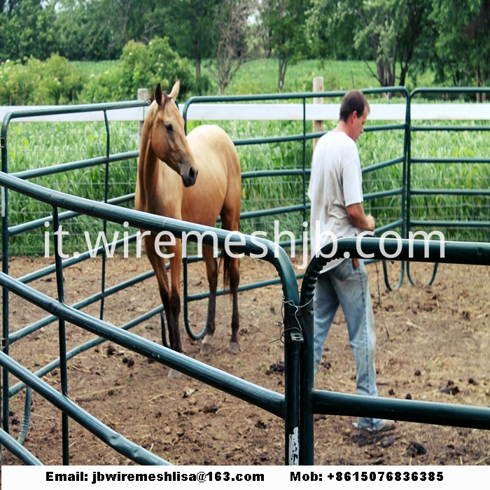 Powder Coated And Galvanized Horse Fence Panel