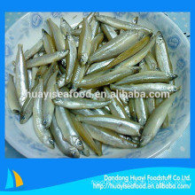 Chinese seafood supplier export frozen pond smelt
