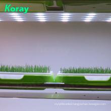 3mm Shelf structure Plant Seedling LED Plant Light Module
