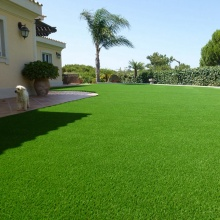 Nature Color Long Service Life Best Artificial Grass