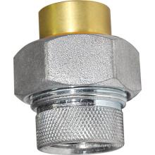 Brass Ferrous Fitting (a. 0384)