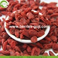 Factory Supply Healthy Dried Nutrition Goji