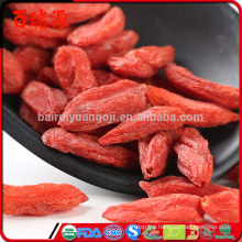Good source of materials made in nature goji berry dried fruit goji berry dietary supplement goji berry during pregnancy with in