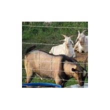 Chine professionnel usine vente directe en gros en vrac clôture de bétail