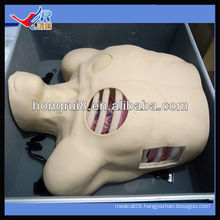 ISO Pleural Drainage Manikin,Pneumothorax Decompression,external drainage