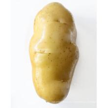 оптовая лучшие цены и хорошие продажи картофеля