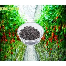 Organic fertilizers widely use in agriculture