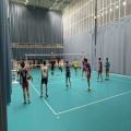 PVC Indoor removable volley Flooring Court Tiles