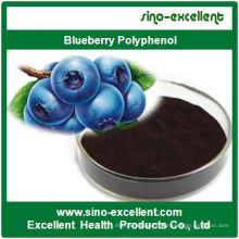 Natural Blueberry Extract Blueberry Polyphenol