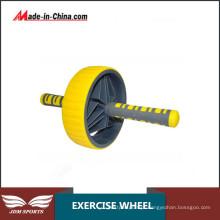 Exercícios da roda do exercício de Ab do Everlast Duo