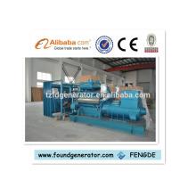 Generador diesel 625kva con stock de importación Detuz 500kw TBD616V12