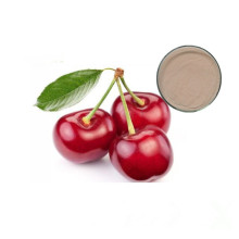 Hot Sale Anti-aging Function Acerola Cherry Extract Powder Vitamin C