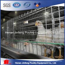 pour la production automatique de cage de poulet de poulet de ferme du Kenya
