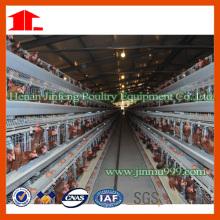 Gaiola da galinha da exploração avícola de China
