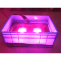 Best cob grow light 100W Waterproof
