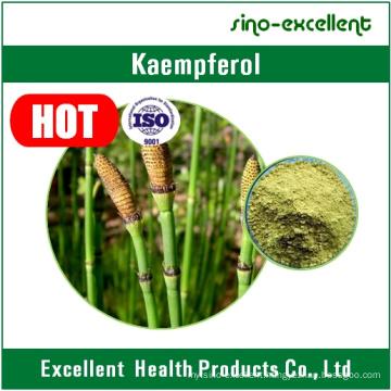 Kaempferia Galanga Extract