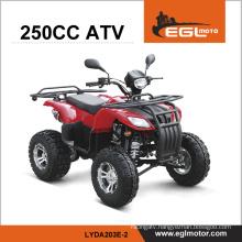 250cc ATV (LYDA203E-2)