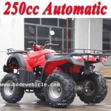 Новые 250cc Боде квадроцикл ATV автоматическая (MC-356)