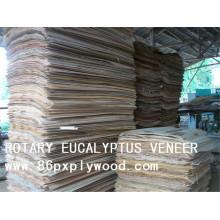 Cheap Veneer-China Wood Veneer