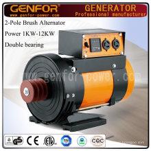 12kVA 2-poliger Doppellager-Generator 3000rpm oder 3600rpm