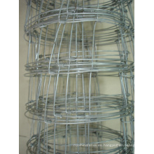 Electro galvanizado alambre de malla de alambre de cerca de campo (anjia-522)
