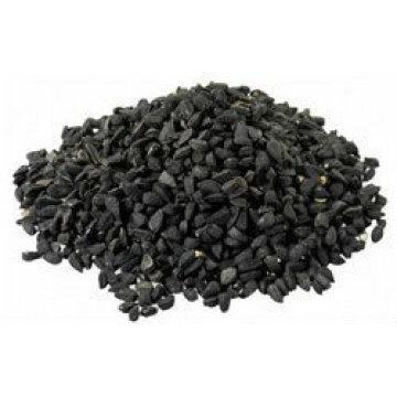 Nigella Seeds India