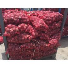 Exportação de cebola fresca / vegetal / com alta qualidade