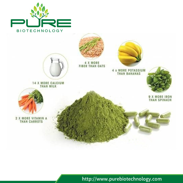 100% Natural Moringa Leaf Extract (3)