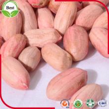 Céréales d'arachide à peau rouge de type long 24/28