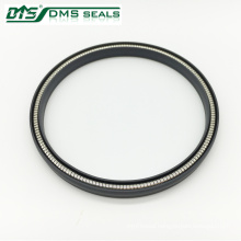 ptfe gas spring energized seal design
