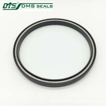 ptfe gas spring energized seal design