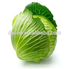 dried cabbage flake