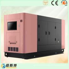 250kw generador silencioso conjunto para el hogar / escuela / hospital