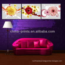 Newest Style Painting Pictures Of Flowers On Canvas For Living Room