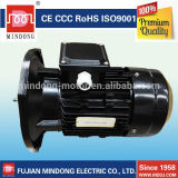 AC electric motors specialized for swimming pool pumps