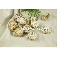 Edible Vegetable Mushroom 4-5cm Dried White Flower Mushrooms