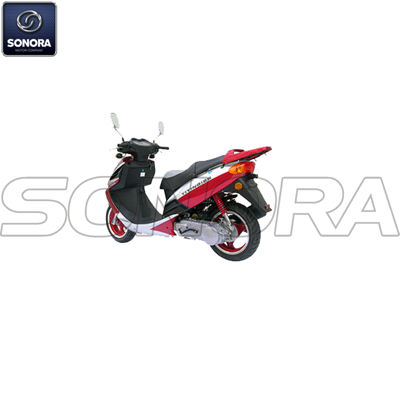 YY50QT-10(TWO STROKE) (3)