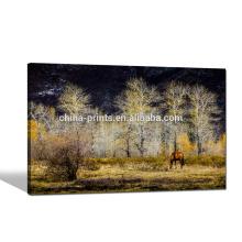 Arte natural da impressão da lona do cenário / impressão da foto do cavalo na lona / arte nova da parede Imagem