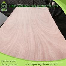 Contrachapado de la piel de la puerta de Okoume del precio competitivo de Linyi con la mejor calidad