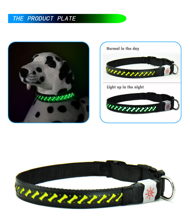 Flashing Led Light Dog Collar