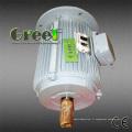 Générateur magnétique permanent de turbine de vent de 50W-5MW