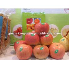 18kg Karton frischen Fuji Apfel für den Export